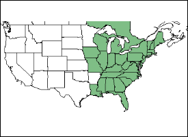 American Chestnut territory