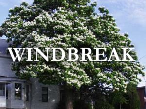 nebraska tree nursery windbreaks